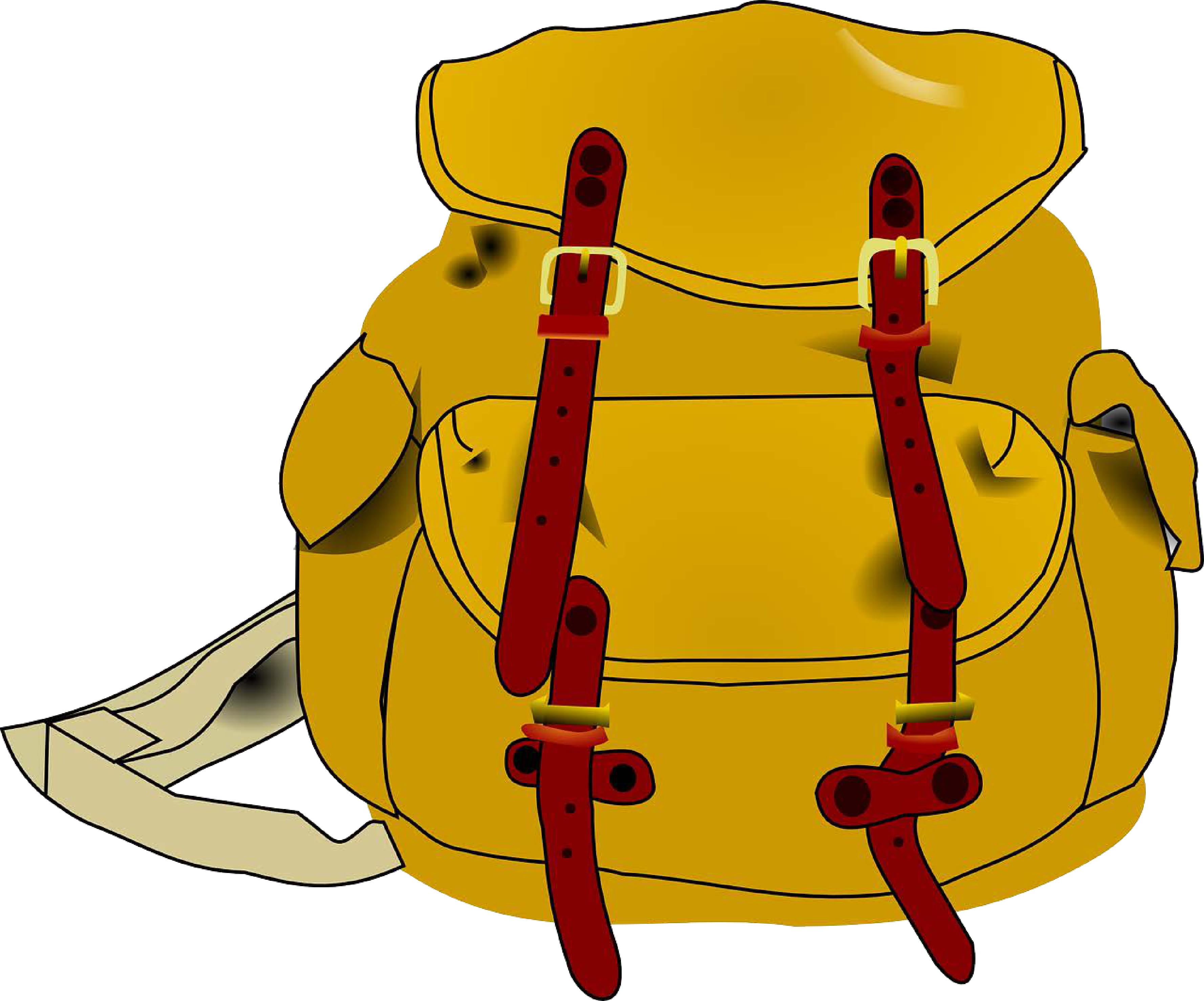 viaggi di istruzione e gite scolastiche